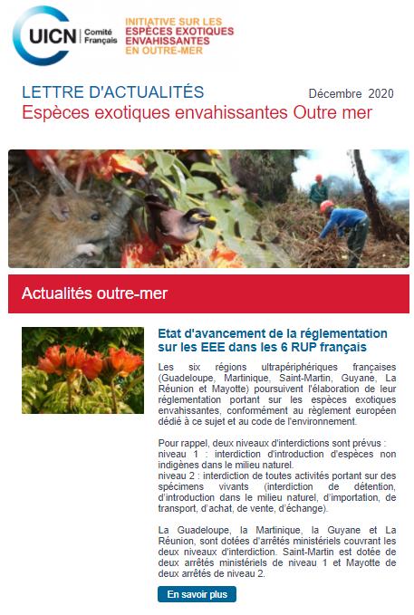 image_lettre_dcembre